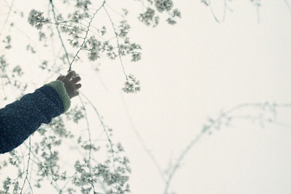 Wil Bolton Bokeh child holding branch