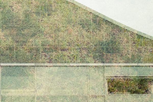 Ryuichi Sakamoto, Illuha, Taylor Deupree - Perpetual, grass overlaid with grid patterns