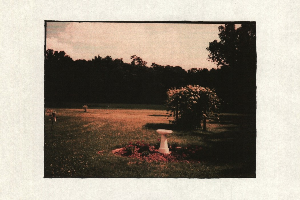 Danny Clay - Ganymede, old photo of a garden in spring or summer