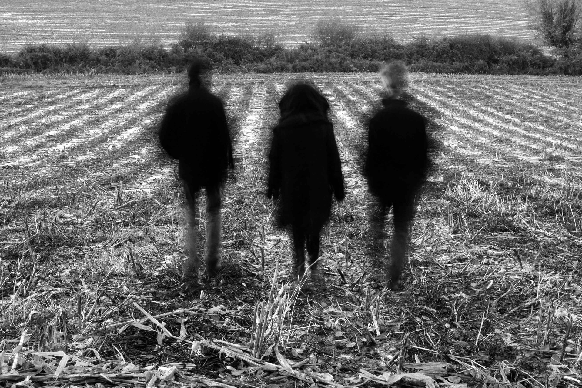 Second Moon Of Winter by Siobhan Russell, three musicians in a harvested field, backs turned
