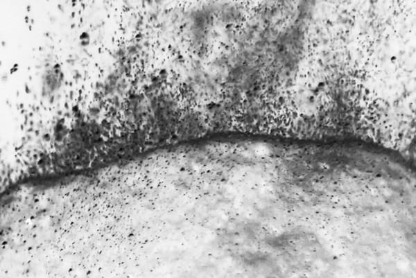 Chalk: time, sense and landscape