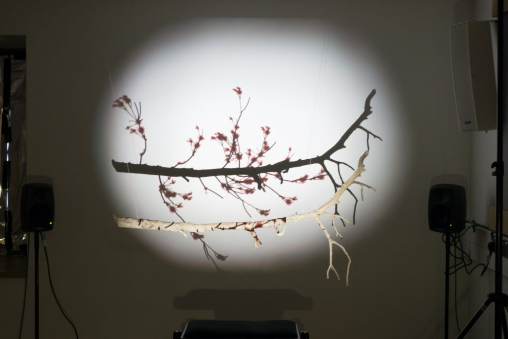 Alexander Pospischil, 'Ichi-Kousatsu', branch with shadow projected on the wall, speakers