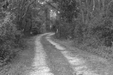 Linda Catlin Smith - Dirt Road, black and white photo of a dirt road heading into a forest