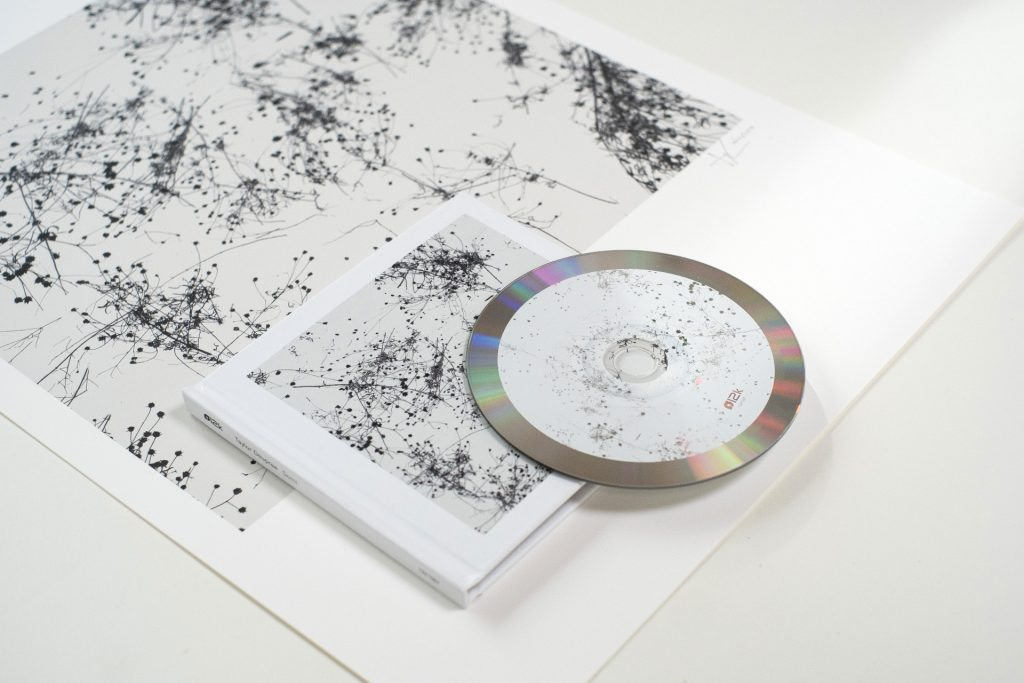 CD, CD sleeve, and large artwork featuring an abstract pattern created by bare branches against a light grey sky