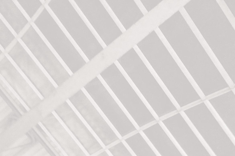Cinema Perdu - Amsterdam CS, soft pale colour-inverted curve of a train station roof.