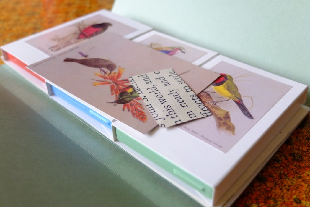 Shrubsole & Tattersall, three tapes with drawings of birds