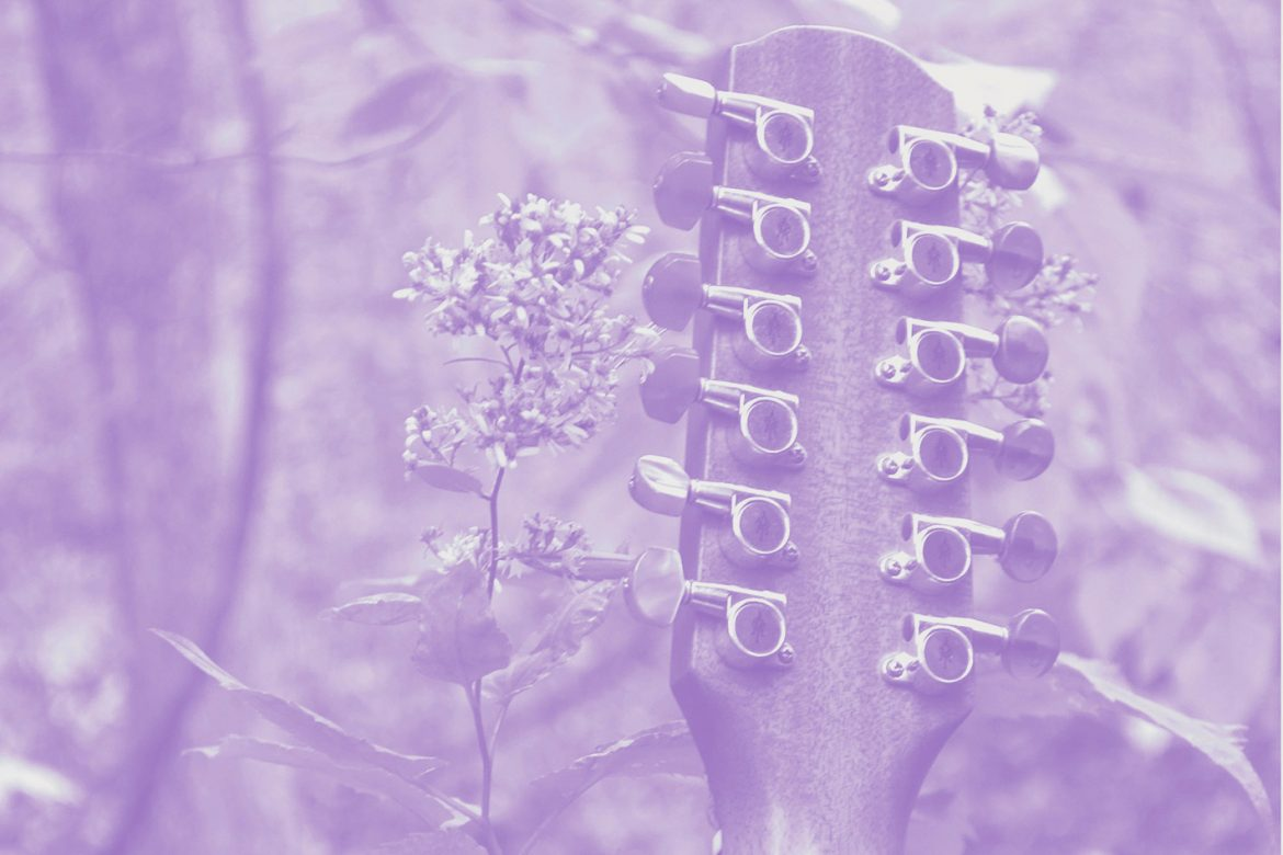 Sarah Louise - Solo Acoustic Vol 12, head of a twelve-string guitar next to a flower and some trees