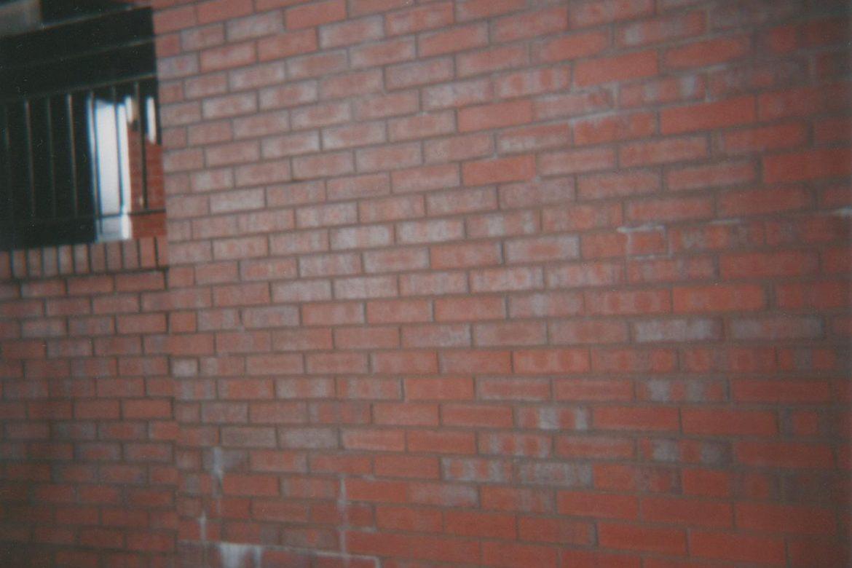 Brick Wall, photo of a red brick wall reflecting sunlight