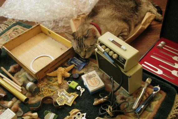 Vanessa Rossetto interview - various everyday objects used for making music lying on the floor next to sleepy grey cat
