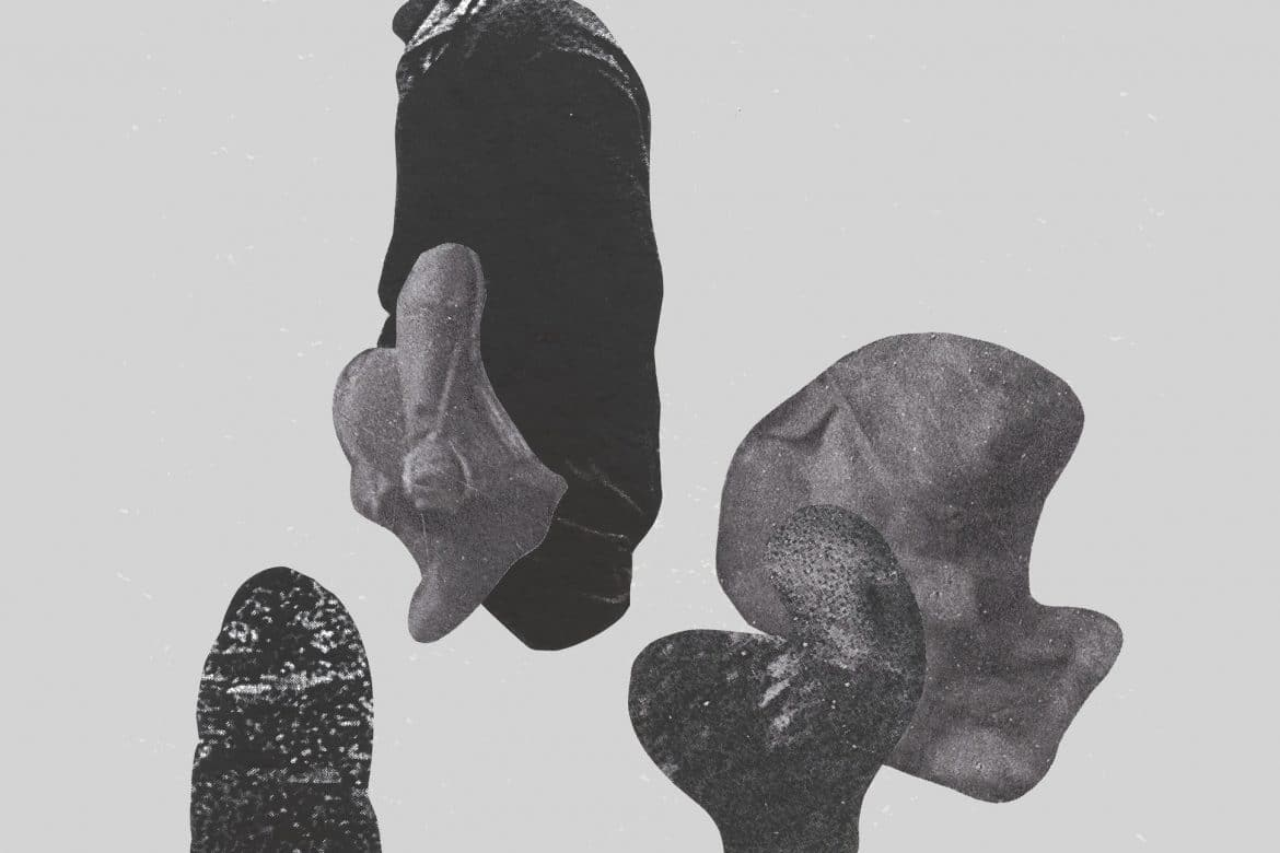 atrick Farmer + David Lacey - Pell-Mell The Prolix, collage of ambiguous amorphous shapes by Sarah Hughes
