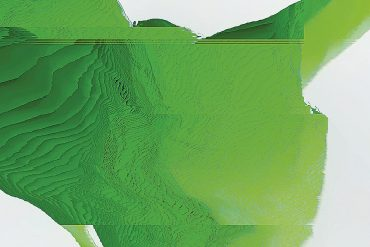 Shuttle358 - Field, distorted computer-generated topographical model in bright green.