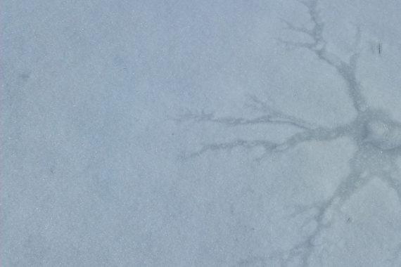 France Jobin - scènes, blue ice cracked in a star-shaped pattern